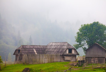 beautiful wooden house on a green hill