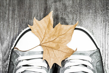 Sneakers with an autumn leaf