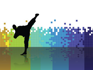 Karate. Sport illustration. Vector