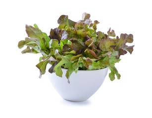 fresh red  lettuce leaves isolated on white