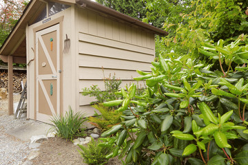 Backyard garden with small shed