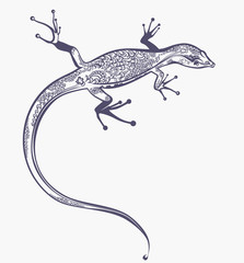 Lizard with a scaly pattern. Beautiful illustration.