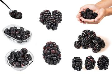 Blackberry set isolated
