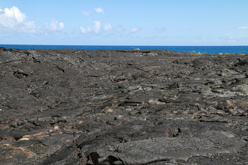 Lava Field, Hawaii Big Island