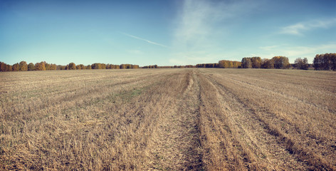 Beautiful autumn panorama in a sunny day with mowed field