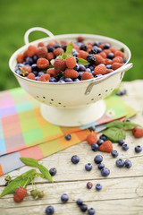 Fruits - fresh berries from garden