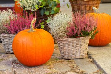 pumpkin and heather