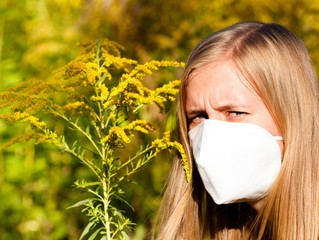 Unbearable Ragweed Allergy