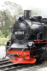 Historischer Dampfzug Rasender Roland