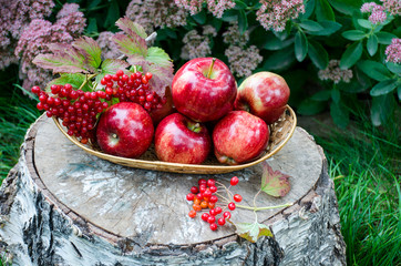 Sweet red apples in the basket on stump