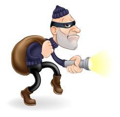 Thief or burglar