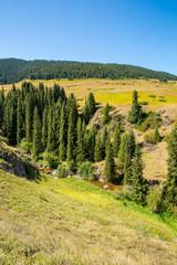 Assy plateau in Tien-Shan mountain  in Almaty, Kazakhstan