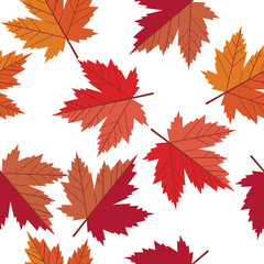 vector seamless pattern maple leaf
