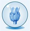 Schilddrüse.Symbolgrafik.Logo.blau