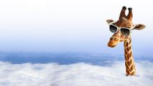 "Постер, картина, фотообои ""Funny giraffe with sunglasses coming out of the clouds"""