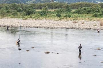 鮎友釣り風景