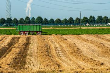 Landwirtschaft-Erntezeit im Weizenfeld