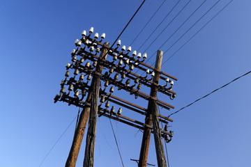 energy, transmission, old, connection, voltage