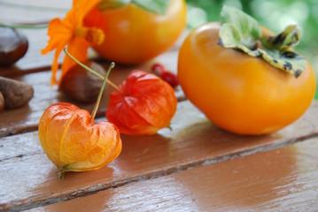 ホオズキと柿