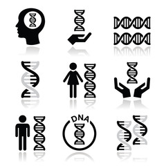 Human DNA, genetics vector icons set