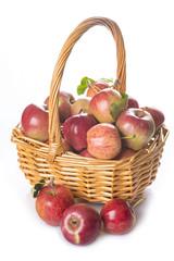 Cesta con manzanas aislada sobre fondo blanco agricultura
