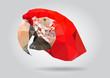Macaw Parrot head vector isolatet geometric illustration