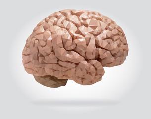 Human brain vector isolated geometric illustration