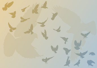 doves on blue and yellow background
