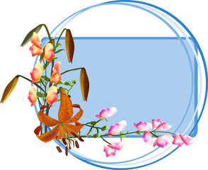 group of lily and other flowers on blue frame