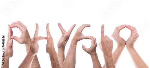Viele Hände formen das Wort Physio