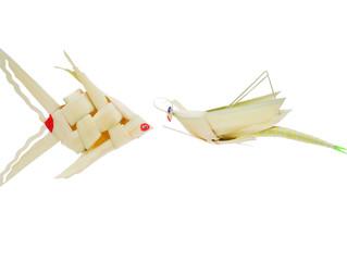 Fish and Locust