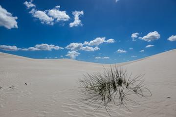 White Atlantis Sand Dunes
