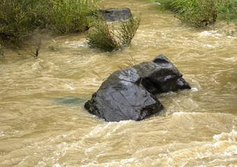 Stone in swollen river