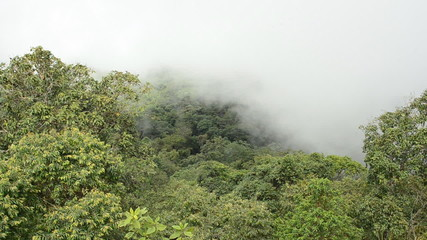 Clouds at rain forest, time lapse. HD