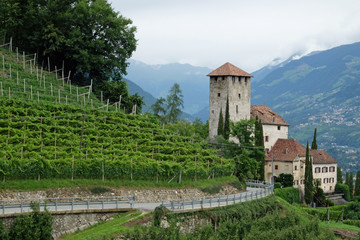 Burg im Etschtal