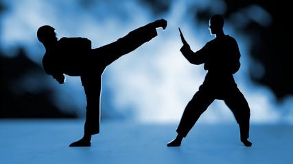 Karate blue Background