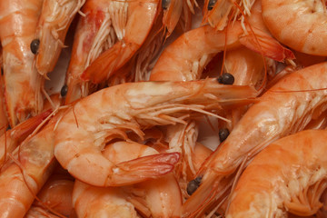 Fresh Prawns (Shrimps) seafood