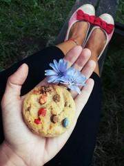 Un biscotto colorato