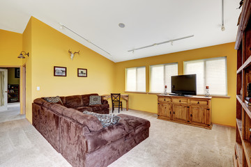 Luxury farm house interior with vaulted ceiling. Comfortable sof