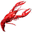Boiled crawfish isolated - 70913404