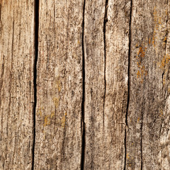 Wooden boards with cracks