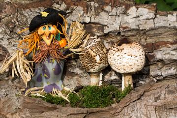 Schirmpilz und Hexe im Herbst