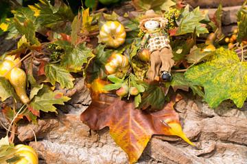 Verfärbte Blätter mit Vogelscheuche im Herbst