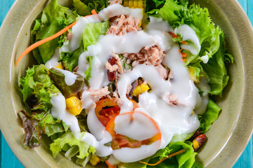 Closeup of vegetable salad with tuna