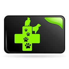 vétérinaire sur bouton web rectangle vert