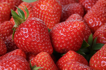 fresh strawberries close up