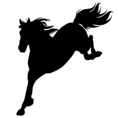 Black horse silhouette 14 (vector)