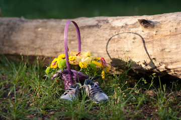 Colorful flowers outside with shoes on grass