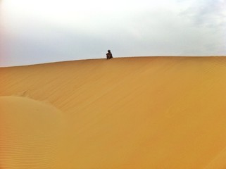 jaisalmer's desert