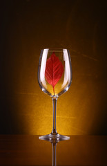 Red leaf in a glass